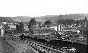Vernonia from Corey Hill - 1924